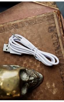 Cable de chargement USB